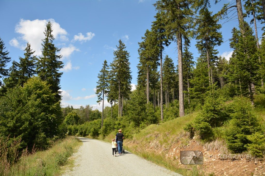 Droga na stok Rymarz (913 m n.p.m.) i do schroniska Zygmuntówka oraz na wyciąg narciarski Jugów Park i do Bukowej Chaty w Gorach Sowich