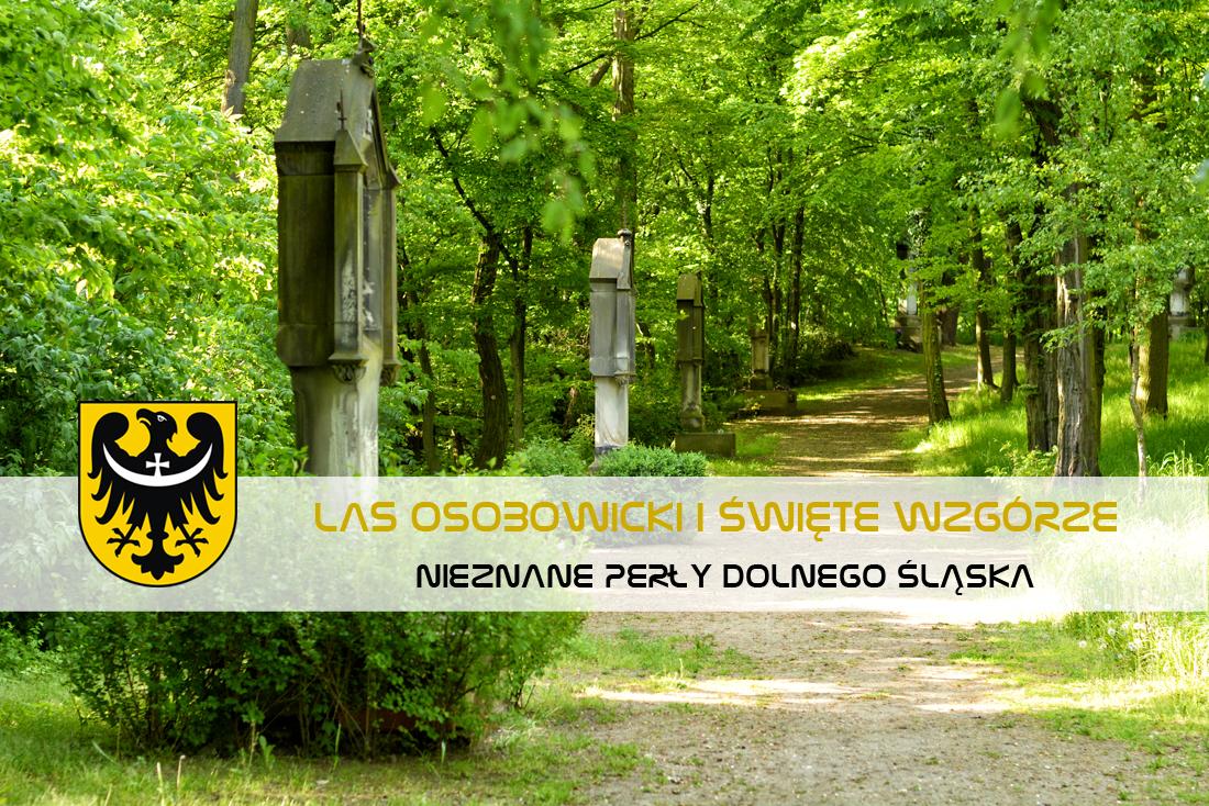 Las Osobowicki i Wzgórze Kapliczne we Wrocławiu