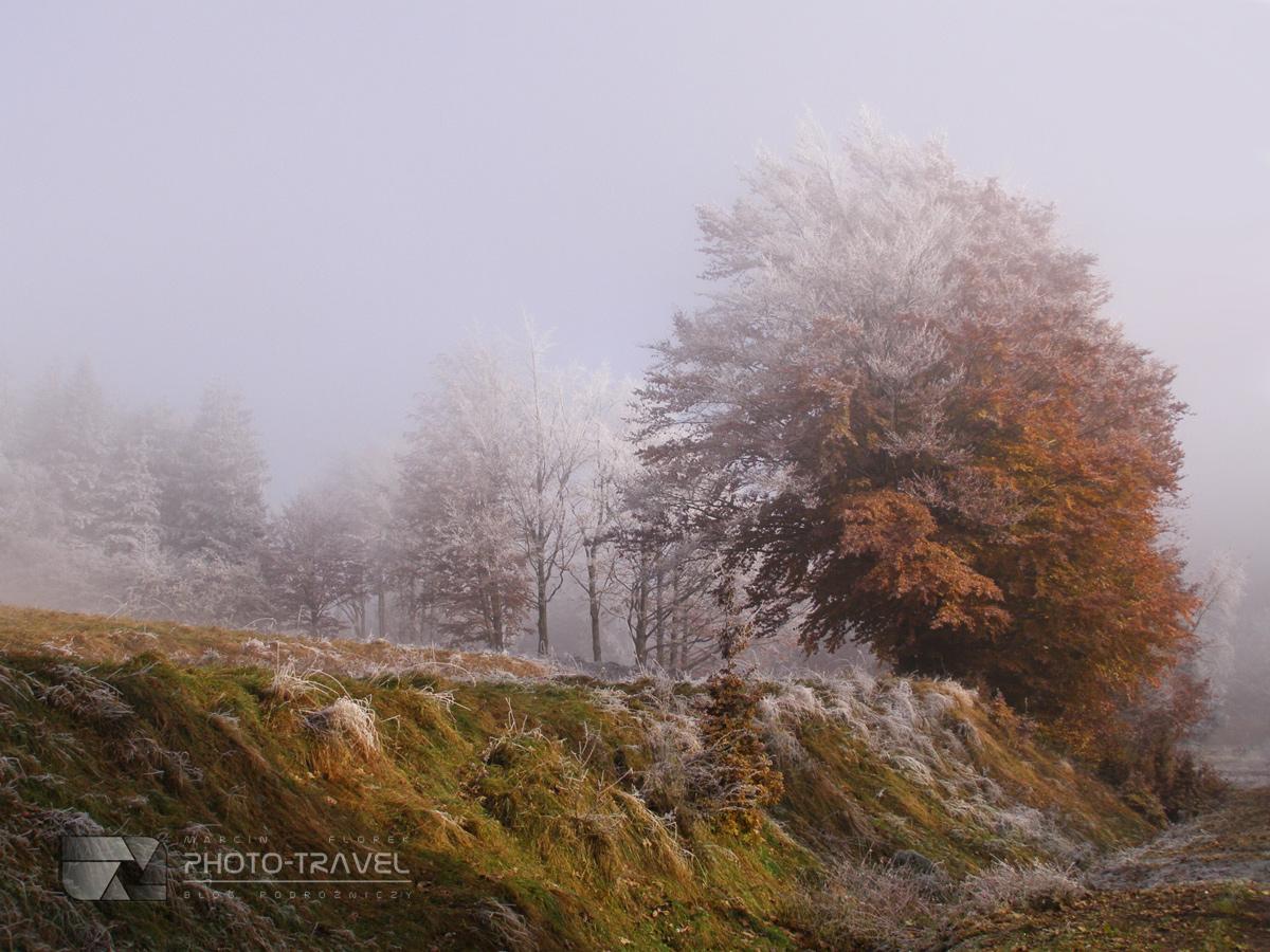 Jesien w górach Sowich