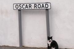 Oscar-Road