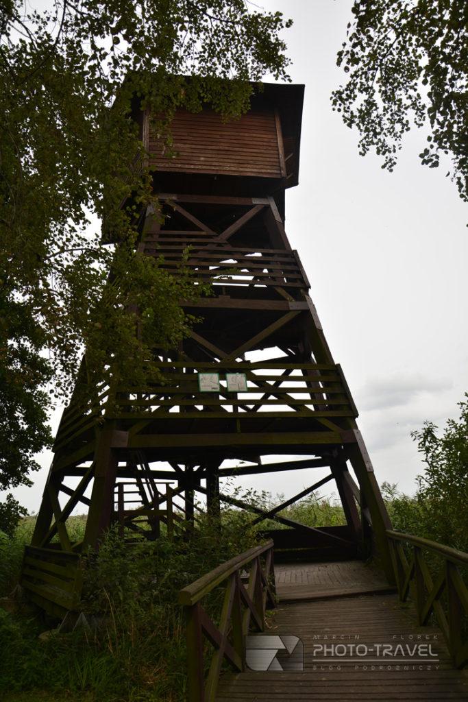 Staw i wieża obserwacyjna Grabownica na Stawach Milickich