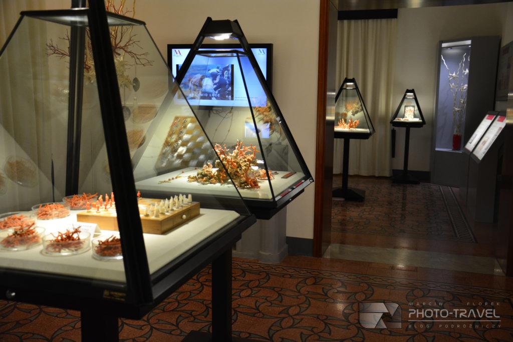 Alghero Muzeum Korali