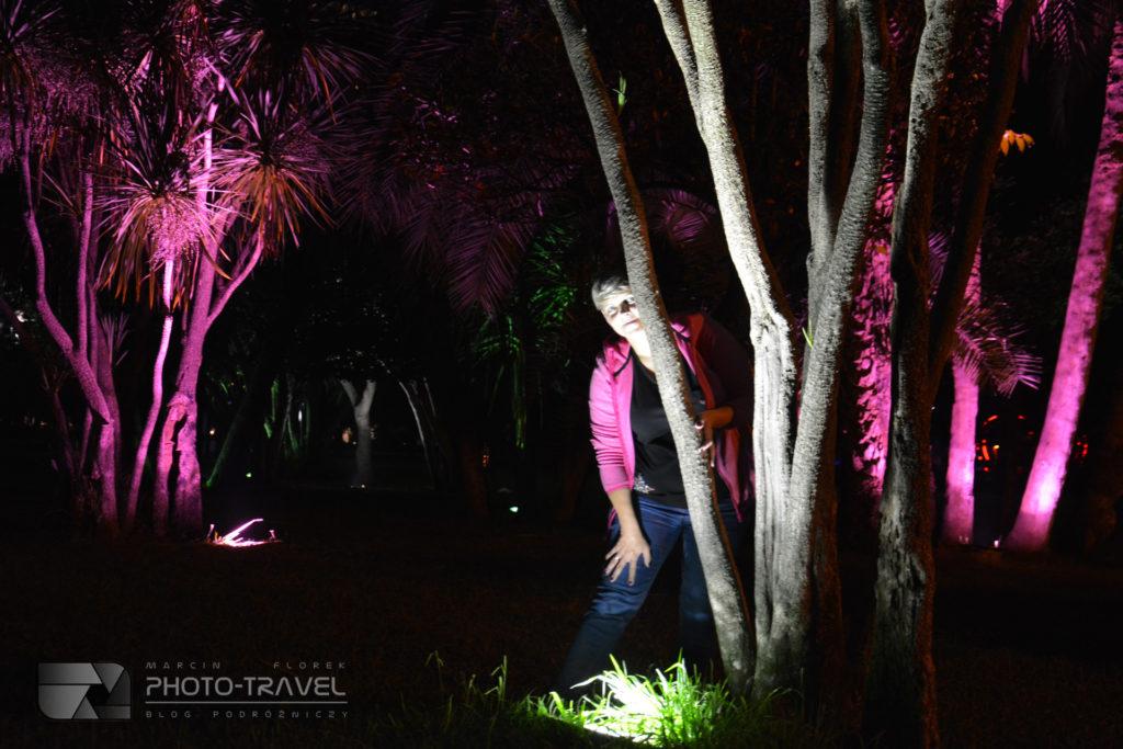 Park 6-go maja nocą
