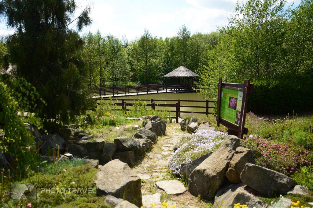 Arboretum leśne im. profesora Stefana Białoboka w Stradomii