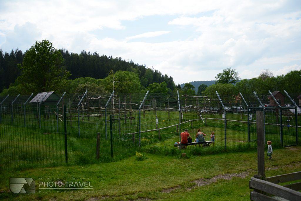 ZOO Łączna kolo Mieroszowa na Dolnym Śląsku z dziećmi