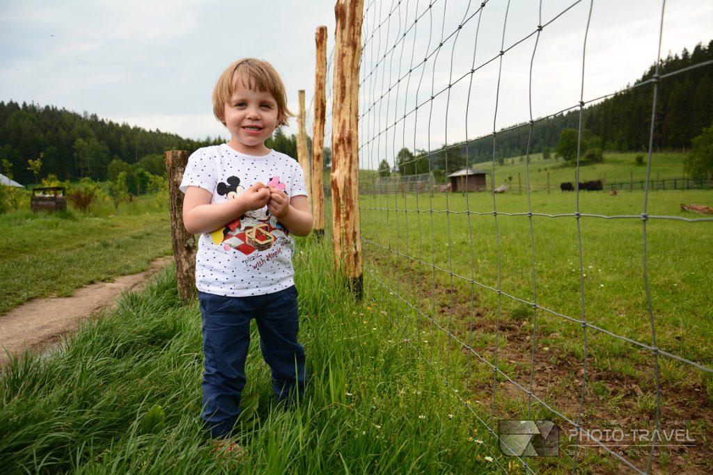 Zwiedzanie ZOO Łączna na Dolnym Śląsku