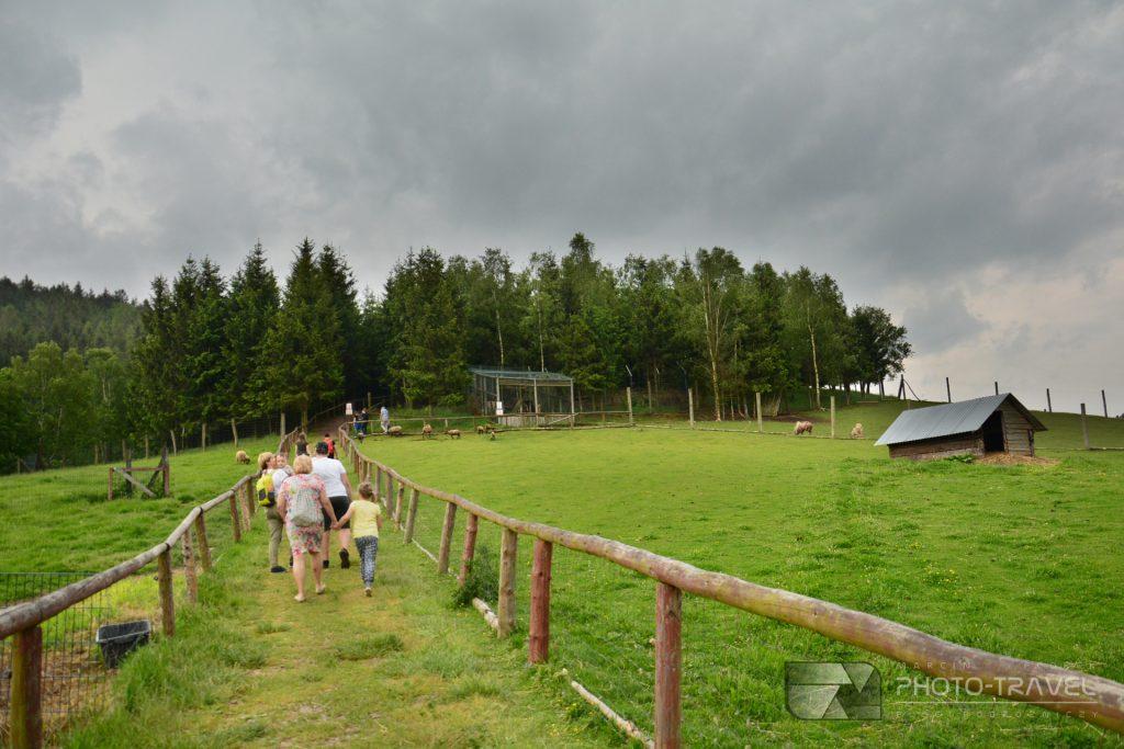 Zwiedzanie ZOO Łączna koło Mieroszowa
