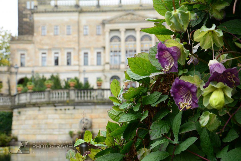 Zamki i pałace w Saksonii