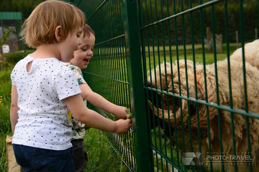 ZOO Łączna z dziećmi