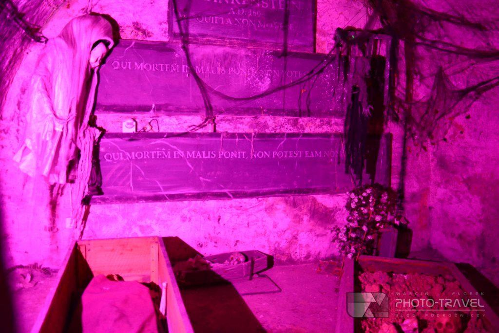 Ząbkowice Śląskie - Muzeum Frankensteina
