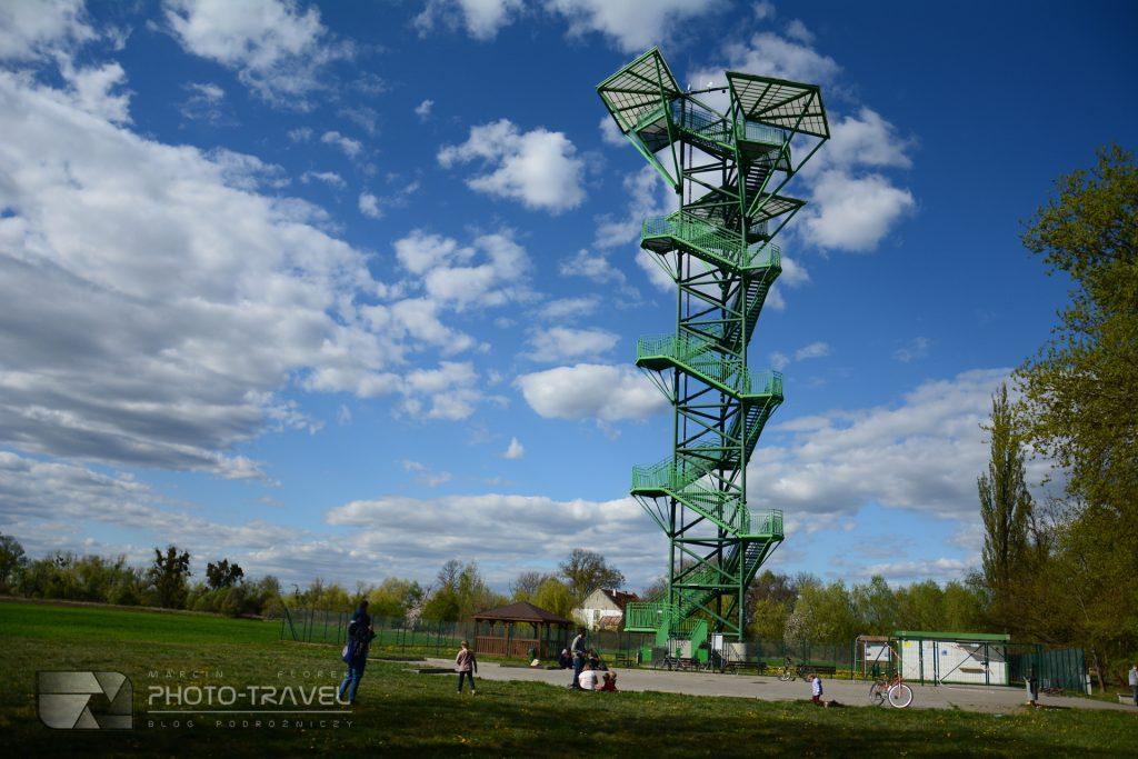 Wieża widokowa w Kotowicach cena