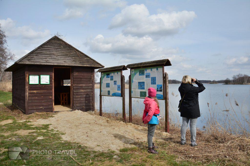 Niezgoda - Czatownia Pod kormoranem - Stawy Milickie - wieże, czatownie i punkty widokowe