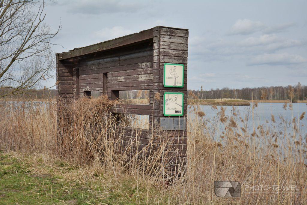Staw Rudy - czatownia na grobli - Stawy Milickie - wieże, czatownie i punkty widokowe