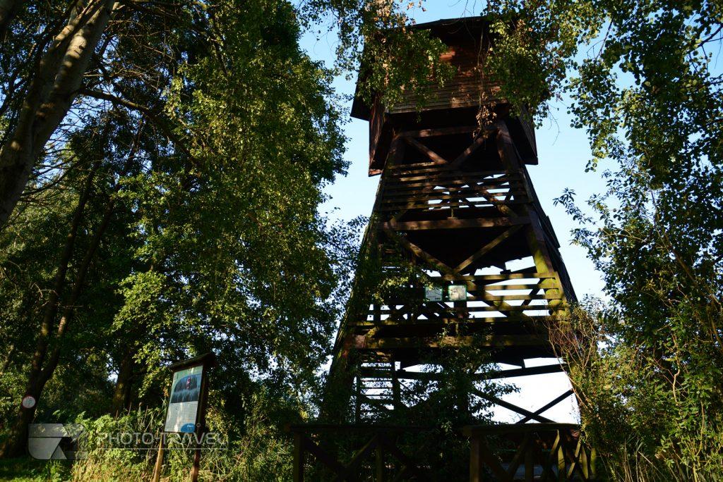 Grabownica wieża na Stawach Milickich