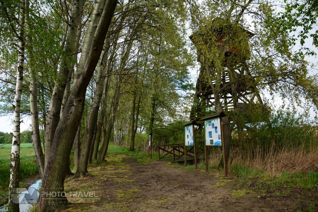 Stawy Milickie - wieże, czatownie i punkty widokowe - wieża Grabownica
