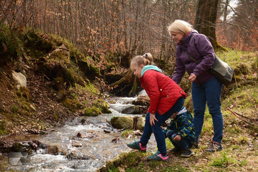 Góry Sowie z Dziećmi proste szlaki