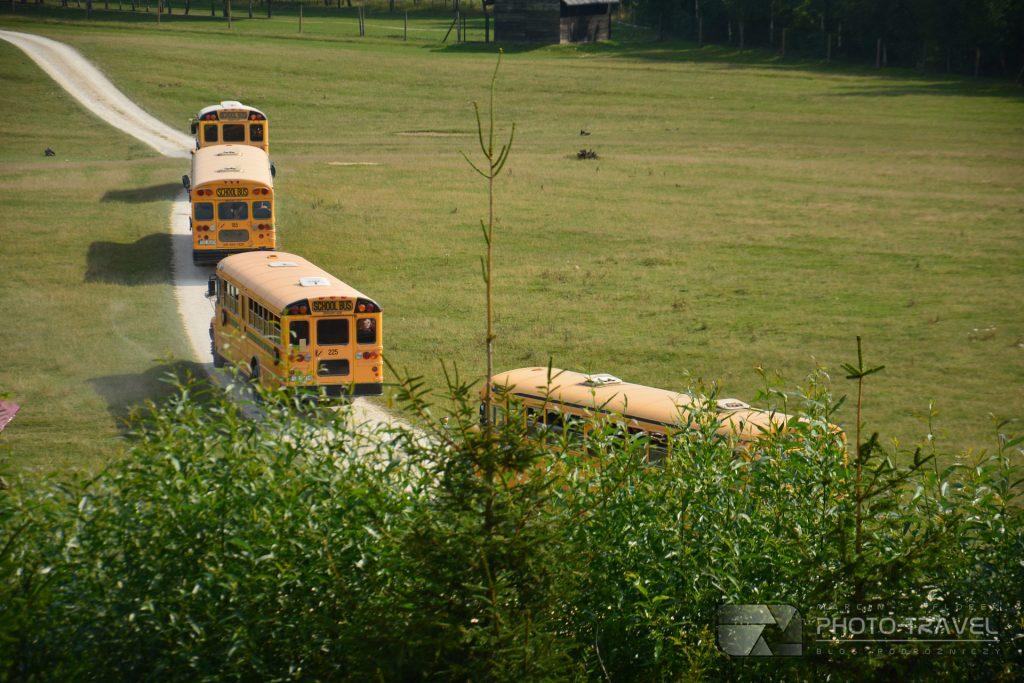 JuraPark Bałtów – Bałtowski Kompleks Turystyczny - Safari amerykańskim schoolbusem