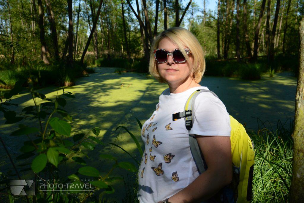 Rezerwat Olszyny Niezgodzkie dojazd, trasy, zwiedzanie